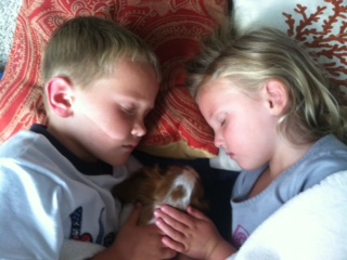 Bladen and Brinley napping with their new puppy... Lola.