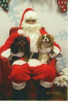 Desi and Santa